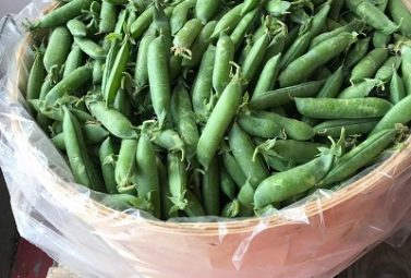 Fresh Green Peas Have Arrived